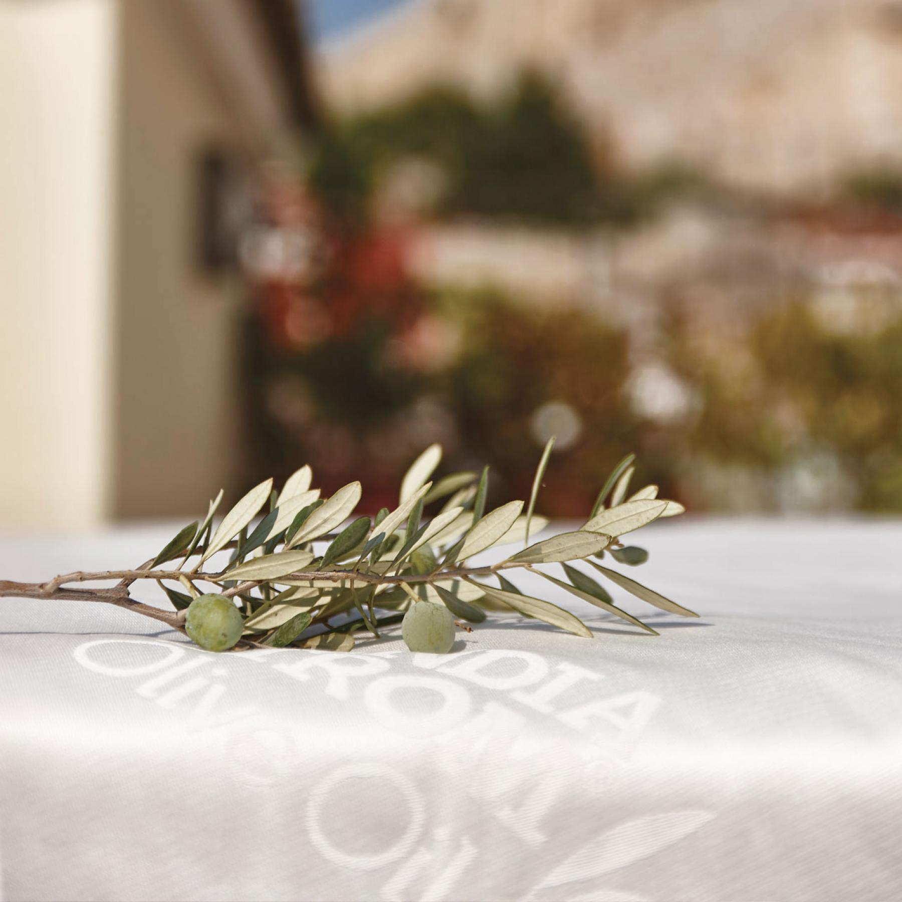 CandiaStrom - Olive oil treatment 3